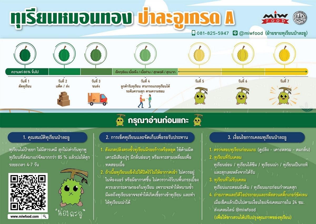 200616 0003 1 - เปิดจองทุเรียนป่าละอู กิโลกรัมละ 300 บาท ส่ง EMS ฟรีทั่วประเทศ